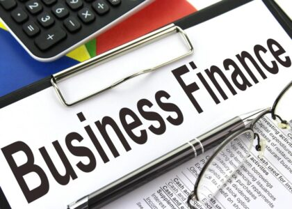 Business Finance in India